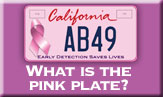 /article/what-pink-plate