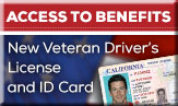 /article/special-driver's-licenses-and-identification-cards-help-veterans-gain-access-benefits
